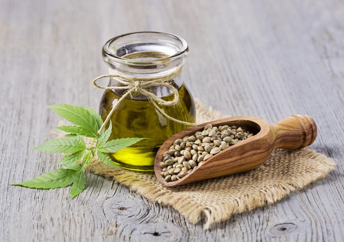 La cannabis come pianta medicinale: uso medico di olio di cannabis e olio di CBD